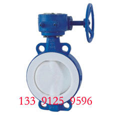 Wafer butterfly valve - PTFE lined