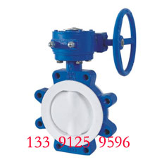 Wafer LT type butterfly valve - PTFE lined