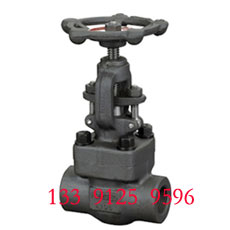 Forged Globe Valve - NPT End