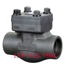 Forged Check Valve - NPT End
