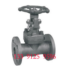 Forged Gate Valve - Flange End