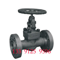 Forged Globe Valve - Flange End