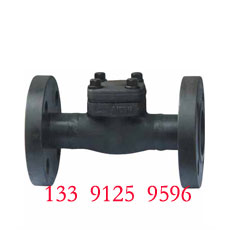 Forged Check Valve - Flange End