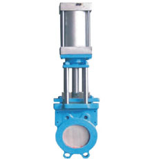 Pneumatic Parallel Slide Valve